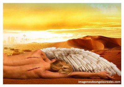 enes de angeles sin alas en hd
